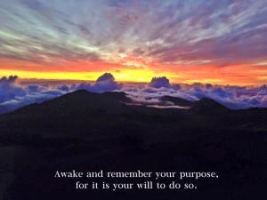 awake & remember